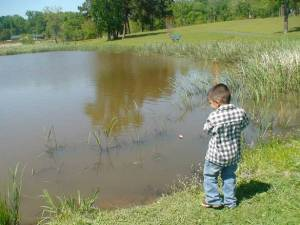 Littie Boy Fishing